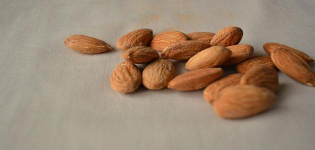 El sector de frutos secos prevé que la cosecha de almendra se sitúe en 84.000 toneladas en España