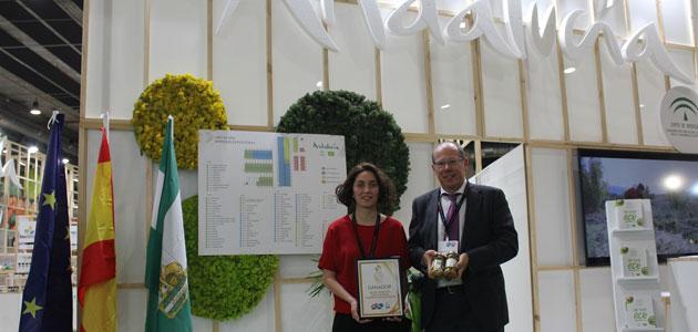 Aceituna Aloreña de Málaga, reconocida en Organic Food Iberia