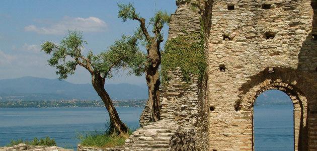 Córdoba y Jaén dominaban el mercado del aceite de oliva hace 2.000 años