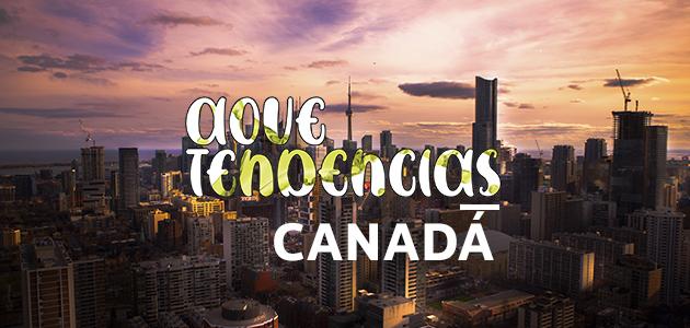 AOVETENDENCIAS Canadá: experiencias inolvidables y un marketing pragmático para aumentar la demanda de virgen extra