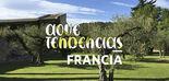 AOVETENDENCIAS Francia: La mantequilla va dejando paso poco a poco al virgen extra