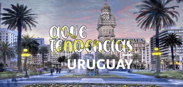AOVETENDENCIAS Uruguay: el virgen extra es sinónimo de calidad, cocina gourmet y salud
