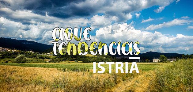 AOVETENDENCIAS Istria: el cultivo del olivo alcanza un estatus de culto