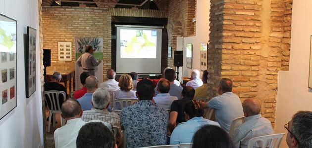 Profesionales del sector oleícola en Andalucía se forman en el binomio AOVE y salud