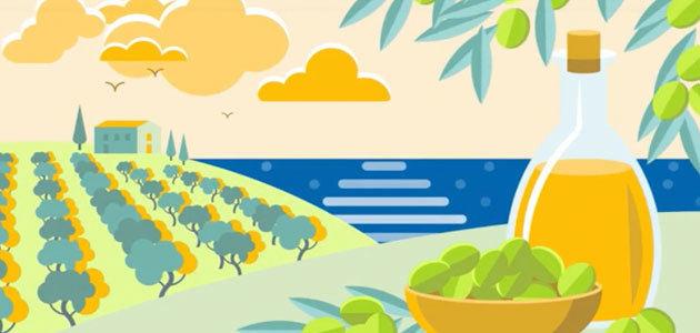 Un proyecto europeo sobre la mejora de la calidad del AOVE, seleccionado como finalista en un concurso de la UE