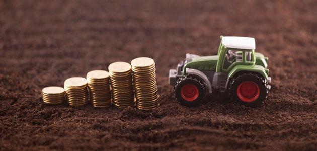 ¿Quién quiere ser el primero en invertir en las empresas olivícolas que van a definir la sociedad del futuro?