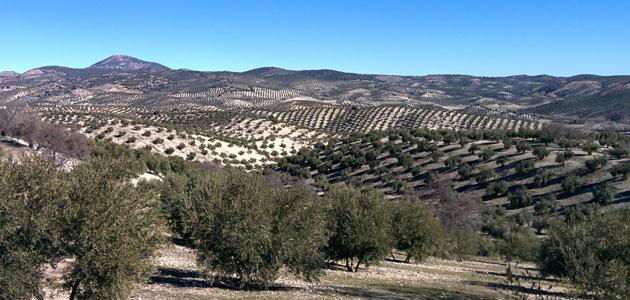 Asaja aprueba una campaña de movilizaciones por el futuro del mundo rural en España