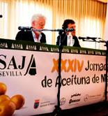 Asaja-Sevilla prevé que la producción de aceituna de mesa se reduzca un 17% esta campaña
