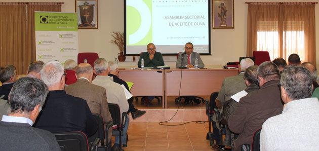 Cooperativas Agro-alimentarias prevé un descenso del 60% en la producción de aceite de oliva en Castilla-La Mancha
