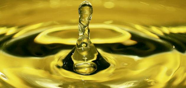 La industria oleícola italiana denuncia los bajos precios del AOVE