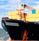 Aumenta el comercio de aceite de oliva en Canadá, EEUU, Japón y Australia