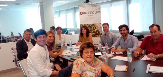 El proyecto Bioecoliva analiza la eficiencia y sostenibilidad de las cooperativas oleícolas