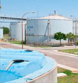 Investigadores de la Universidad de Cádiz transforman los residuos de la aceituna de mesa en biogás