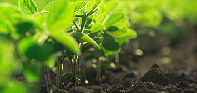 Bioibérica colaborará con Biome Makers Inc. en la apuesta por soluciones sostenibles en la agricultura