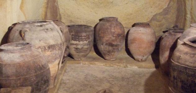 Encuentran indicios de producción de aceite de oliva en el Bajo Aragón en el siglo I a.C.