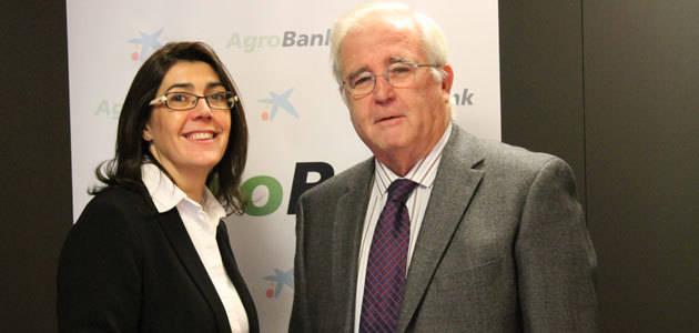 CaixaBank e Infaoliva firman un acuerdo para promover el acceso al crédito del sector oleícola