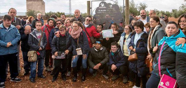 La DOP Aceite Campo de Calatrava inaugura su primer olivar solidario apadrinado a beneficio de la Fundación Síndrome de Down Madrid