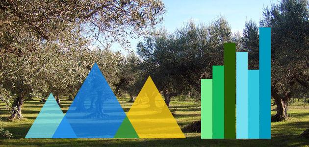 La pregunta del millón: ¿cómo se van a comportar los precios del aceite de oliva?