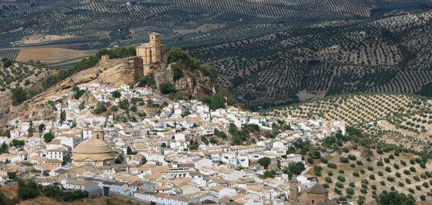 Recta final de la candidatura de Paisaje Cultural del Olivar Andaluz a Patrimonio Mundial