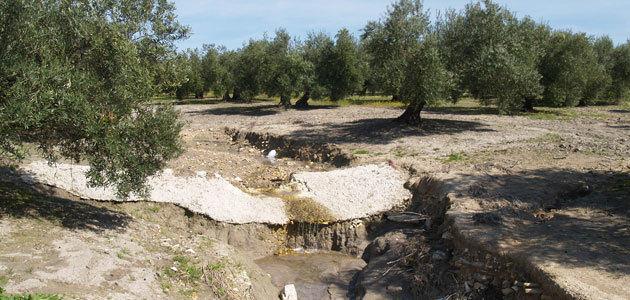 Roma acoge el Simposio Mundial sobre la Erosión del Suelo
