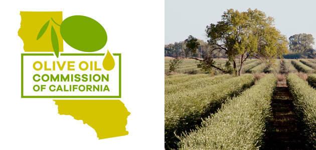 La Comisión del Aceite de Oliva de California confirma los avances de su AOVE en materia de calidad