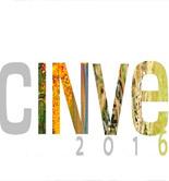 Palacio de los Olivos obtiene el Gran CINVE 2016