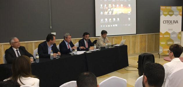 Citoliva y la AEI Inoleo potenciarán la responsabilidad social de las empresas oleícolas