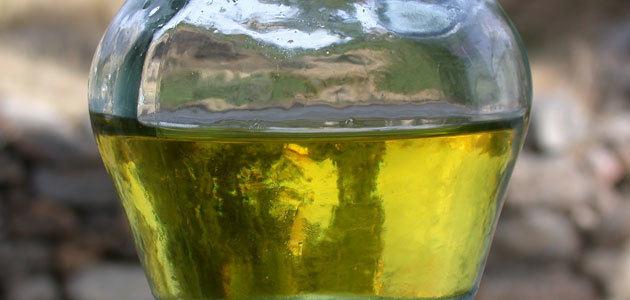 COAG-Andalucía apuesta por datos fiables para frenar la especulación en el mercado de aceite de oliva