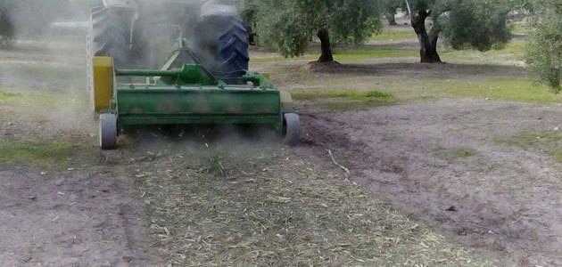 COAG-Jaén reivindica el importante avance en el tratamiento de los restos de poda del olivar