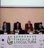 El I Congreso Ibérico de Olivicultura analiza los retos del olivar en una agricultura sostenible