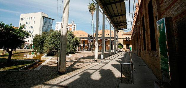 Nueva estructura orgánica de la Consejería de Agricultura de Andalucía