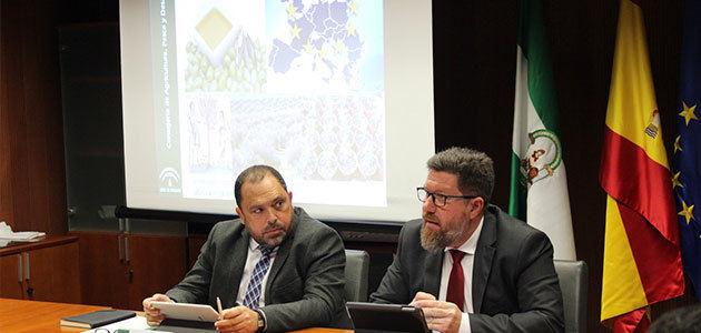 El Consejo Andaluz del Olivar hace balance y estudia las medidas para evitar la introducción de la Xylella fastidiosa