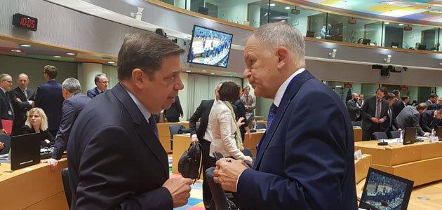 Planas asegura que la actitud de la CE es positiva a la propuesta de almacenamiento temporal de aceite de oliva