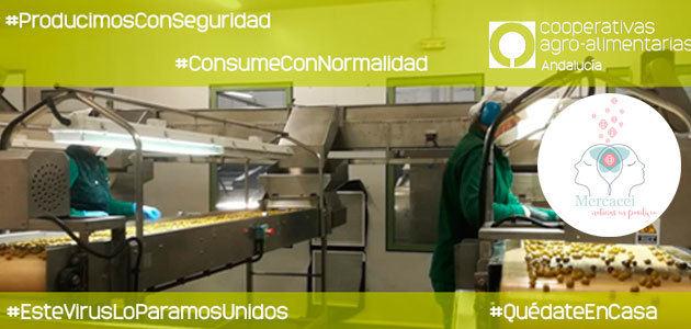 Las cooperativas andaluzas trabajan a destajo para garantizar los pedidos de aceite de oliva