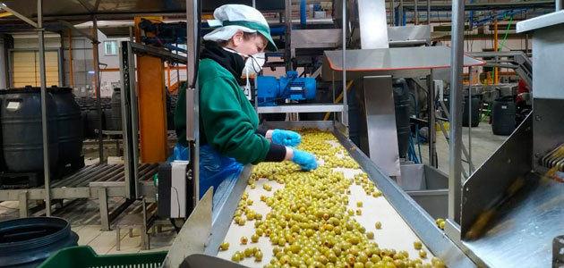 Cooperativas Agro-alimentarias de Andalucía urge medidas económicas para el sector primario