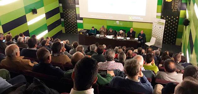 Cooperativas Agro-alimentarias de Andalucía participará activamente en las movilizaciones del sector olivarero