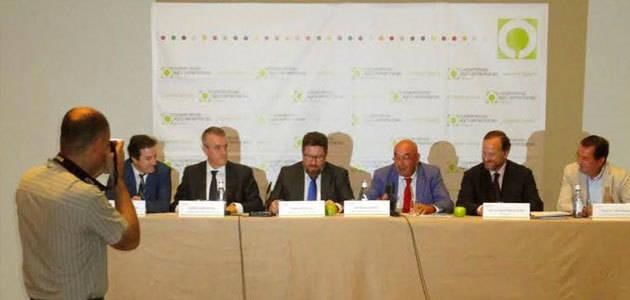 Andalucía pide al Gobierno que lleve a la UE una propuesta que permita el almacenamiento colectivo de aceite de oliva
