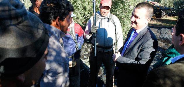 Castilla-La Mancha establece medidas para evitar posibles brotes de COVID-19 en la campaña de aceituna