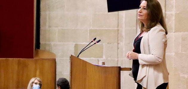 Crespo subraya la unidad de la Junta y el campo andaluz en defensa de la PAC
