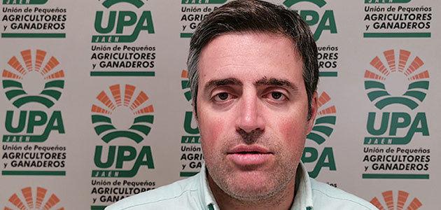 Cristóbal Cano ocupará la vicepresidencia del grupo de olivar del Copa-Cogeca