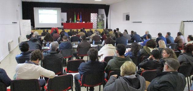 El olivar en seto y la aceituna de mesa ecológica, a debate en las IV Jornadas del Olivar y del Aceite Ecológico de Almendral