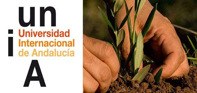 Olivicultura de precisión, objeto del nuevo curso de formación de la UNIA
