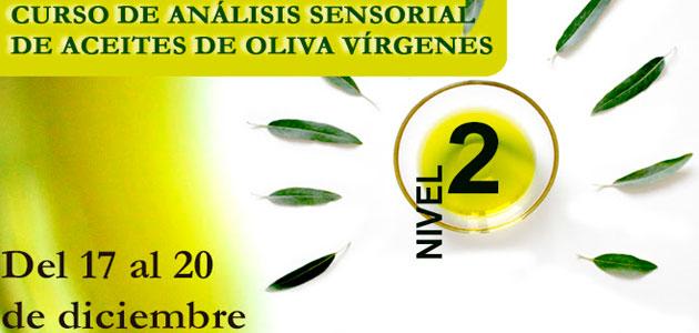 La DOP Priego de Córdoba acoge una nueva edición del Curso de Análisis Sensorial de AOVs