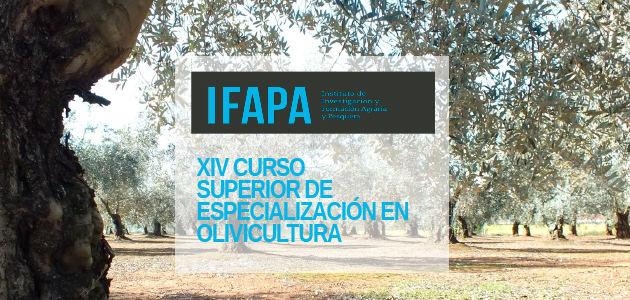 El XIV Curso Superior de Especialización en Olivicultura calienta motores