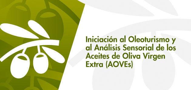 La Universidad de Málaga acoge un curso sobre oleoturismo y análisis sensorial de los AOVEs