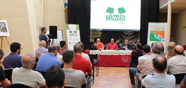 El proyecto CUVrEN_Olivar expone los beneficios de la implantación de cubiertas vegetales de especies nativas en olivar