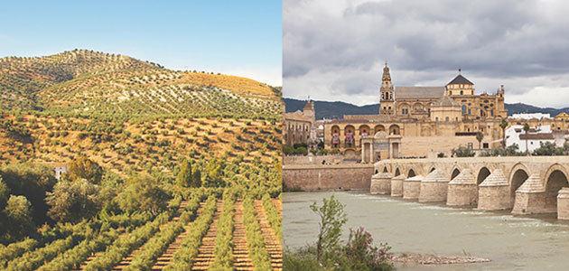 #DATAGRI2018 reunirá en Córdoba a los principales impulsores de la transformación digital en el sector agroalimentario