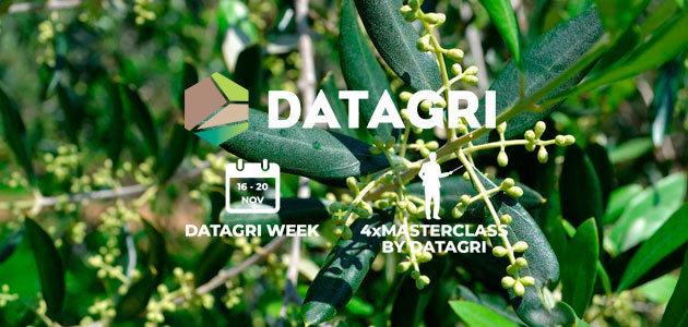 #DatagriVirtual20: la transformación digital en el olivar