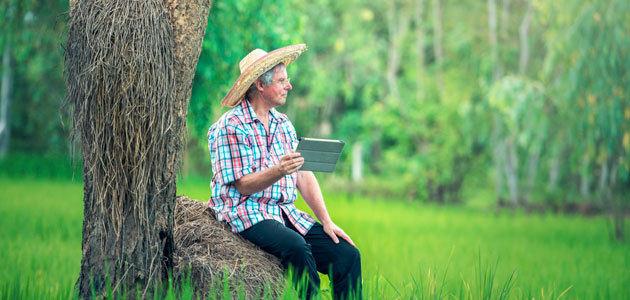 El Gobierno examina la estrategia de digitalización del sector agroalimentario