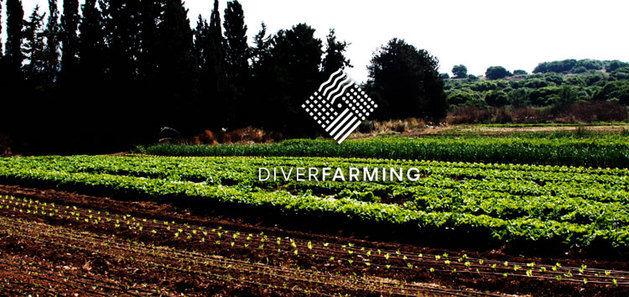 El proyecto Diverfarming garantiza la continuidad de sus ensayos